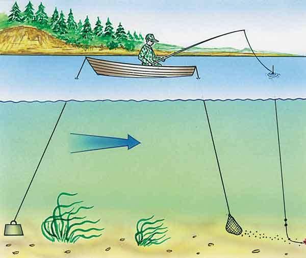 разрешено ли ловить рыбу сетью